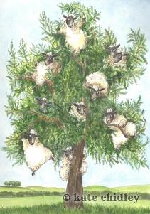 Yewe Tree
