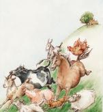 Home Gallop